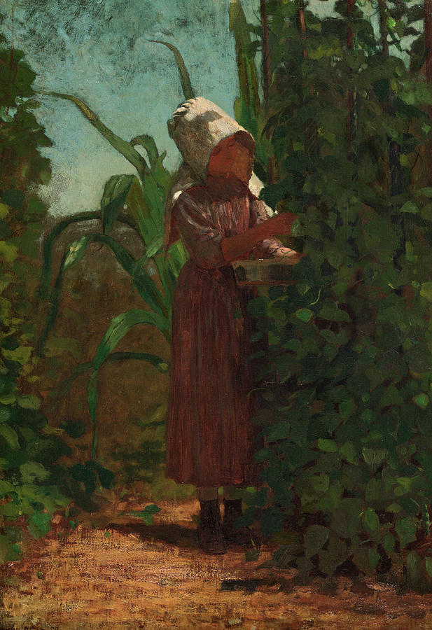 Winslow Homer Painting - The Bean Picker, 1876 by Winslow Homer