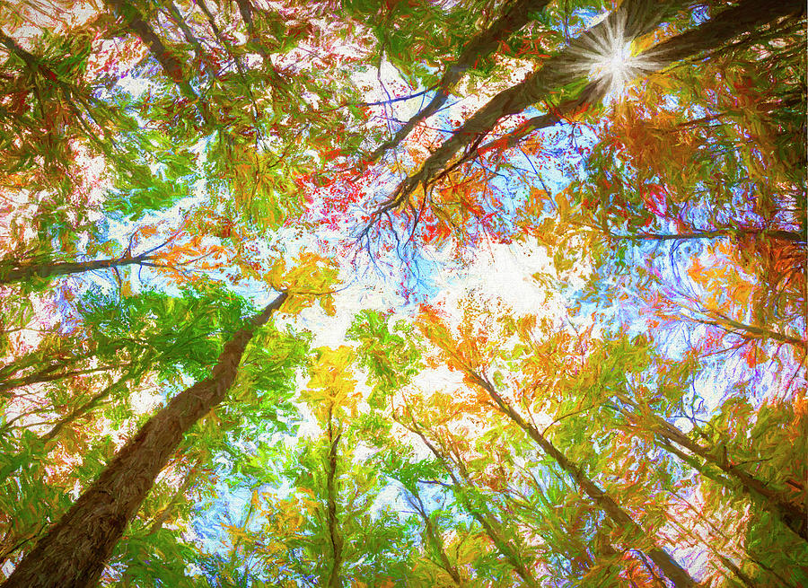 The Beautiful Colors of West Virginia by Will Moneymaker