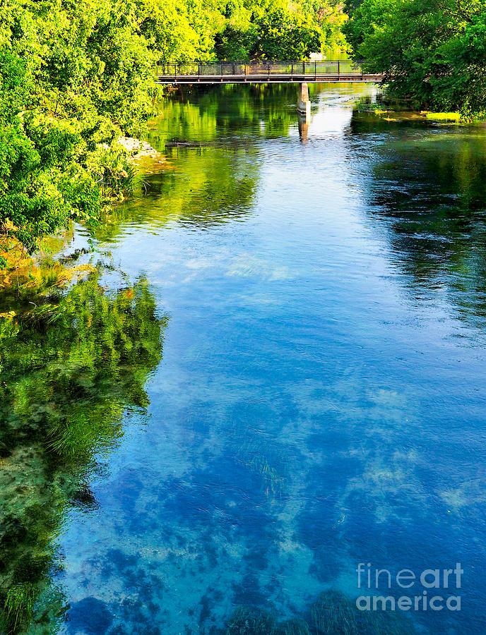 The Beautiful San Marcos River Photograph