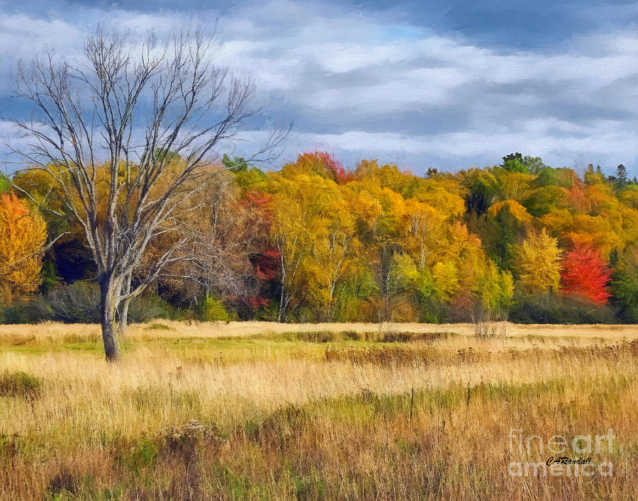 Barely Alone in Autumn by Carol Randall