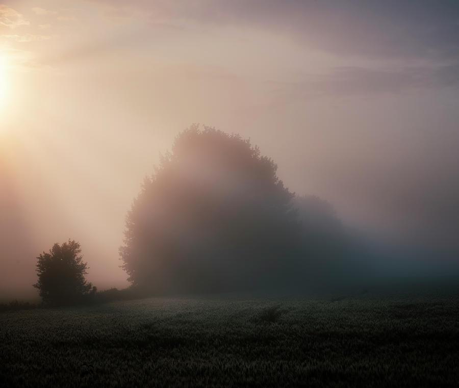 The Beginning of Autumn by Dan Jurak