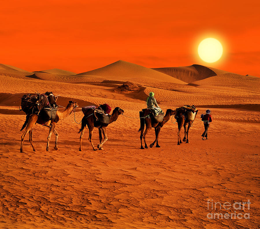 Color Photograph - The Berbesky Tribe Passes The Desert In by Seqoya