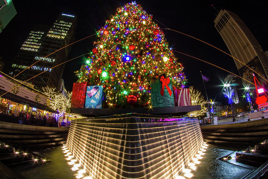 The Big Christmas Tree by Jay Smith