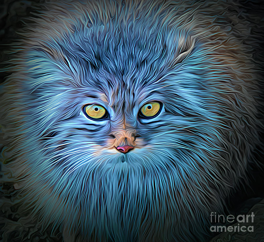 The Blue Cat by Brian Tarr
