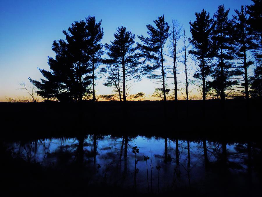 Sunset Photograph - The Blue Hour  by Lori Frisch