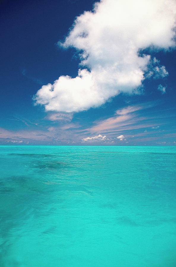 The Blue Waters Of The Caribbean Off Photograph by Medioimages/photodisc