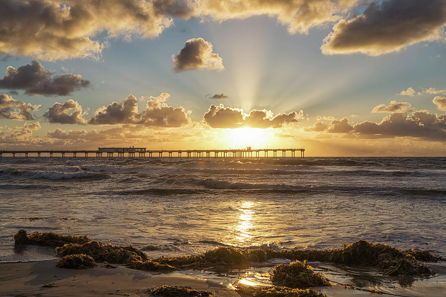 The Brightest Light In OB by Joseph S Giacalone