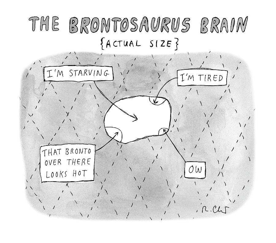 The Brontosaurus Brain Drawing by Roz Chast
