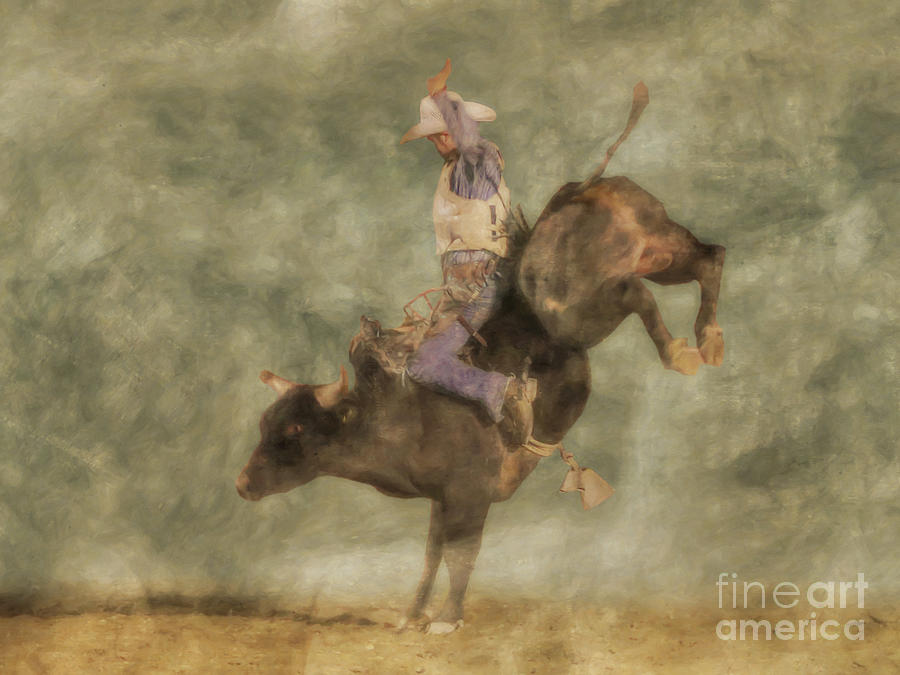 The Bull Rider by Randy Steele