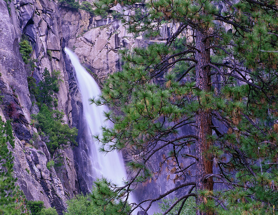 The Cascades From Yosemite National Photograph by Tim Fitzharris/ Minden Pictures