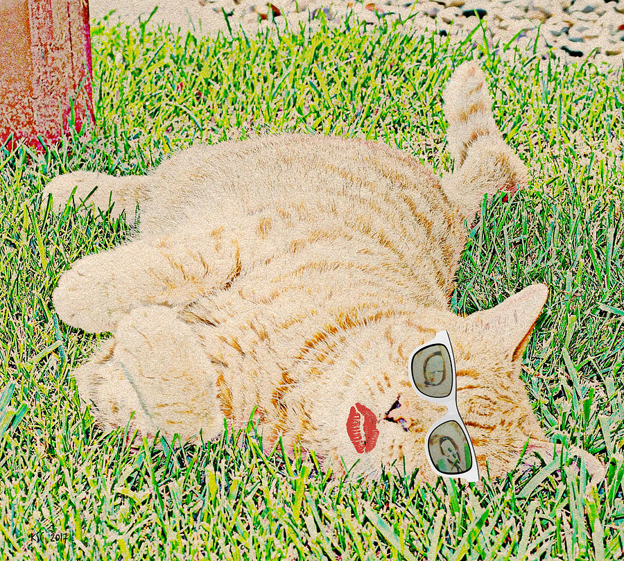 The Cat with Sunglasses by Karen Conley