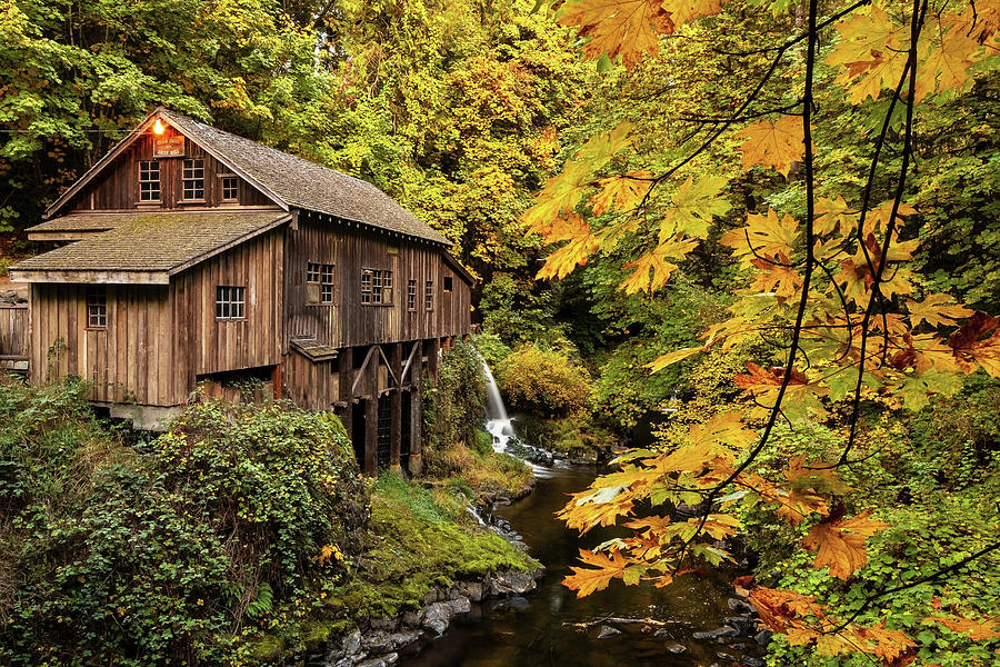 The Cedar Creek Grist Mill by Patrick Campbell