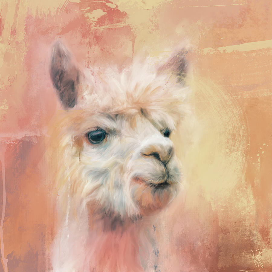 The Charismatic Alpaca by Jai Johnson