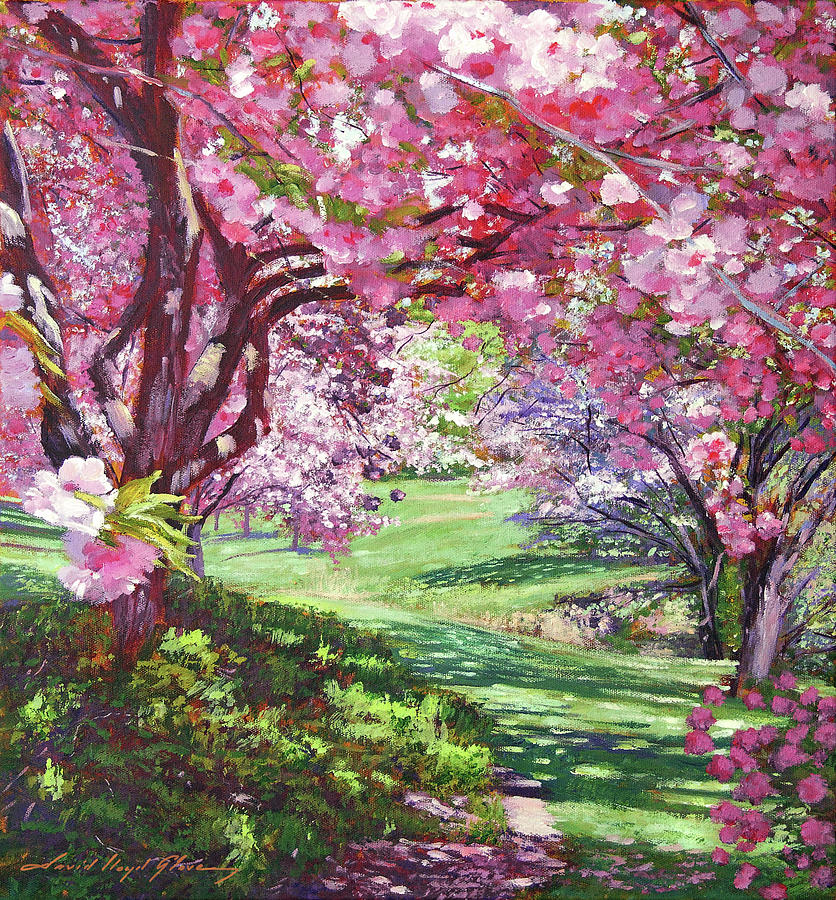 THE CHERRY BLOSSOM CANOPY by David Lloyd Glover