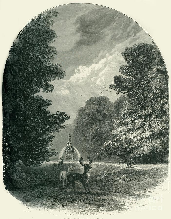 The Chestnuts In Bushey Park Drawing by Print Collector