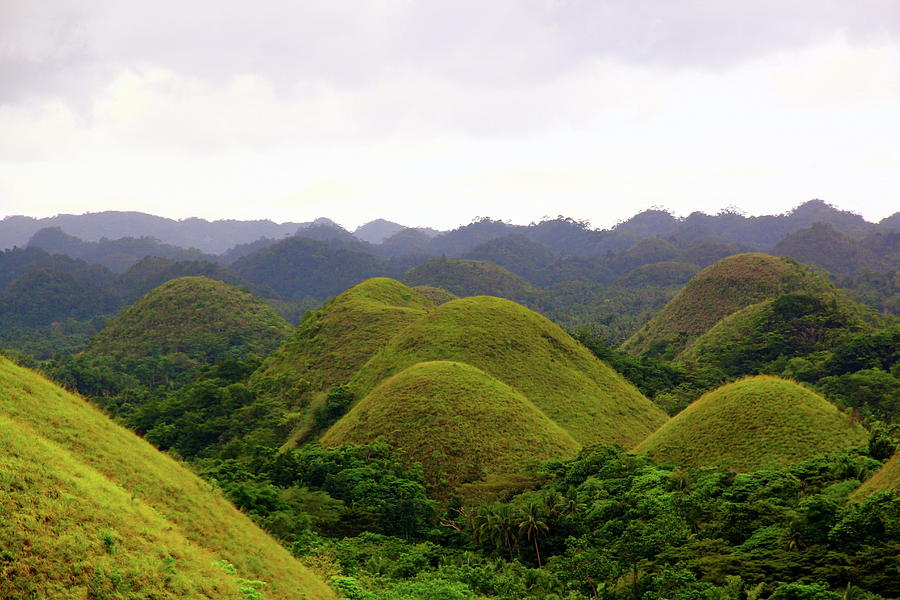 The Chocolate Hills, Bohol, Philippines Photograph by Terence C. Chua