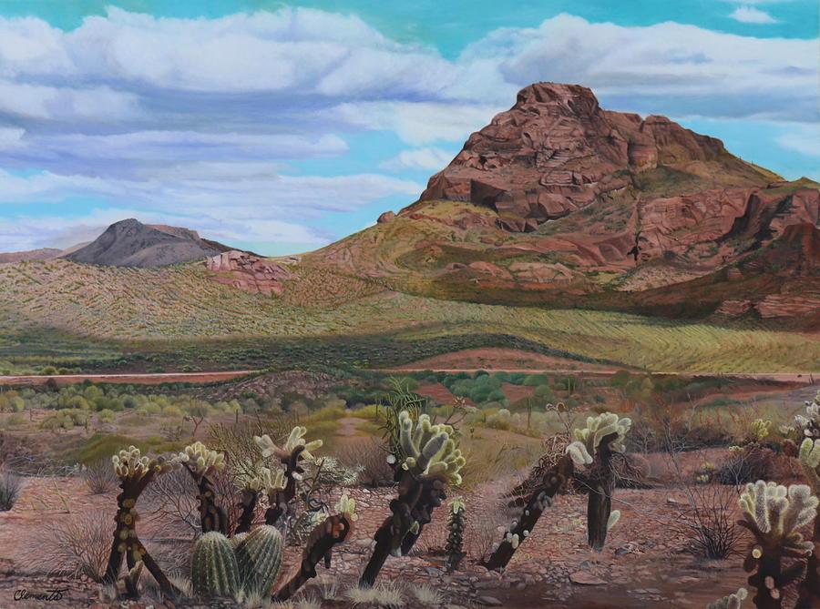 The Cholla at Mount McDowell, Arizona by Barbara Barber