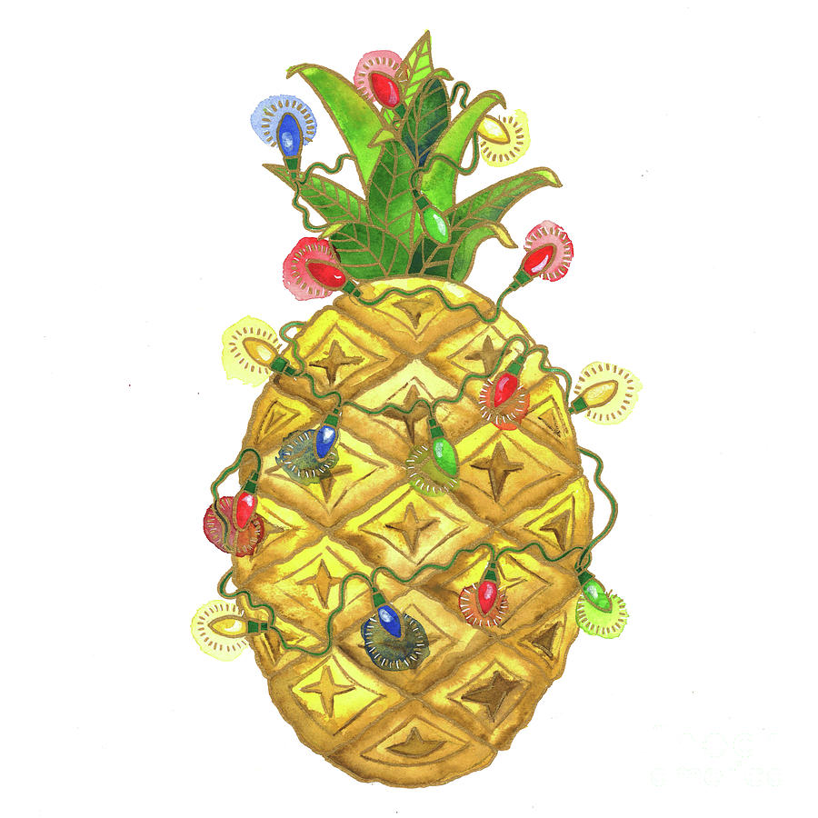 The Christmas Pineapple by Shelley Wallace Ylst