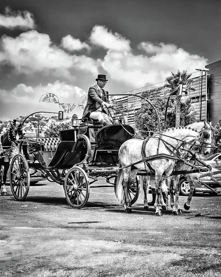Coachman Photograph - The Coachman by Borja Robles