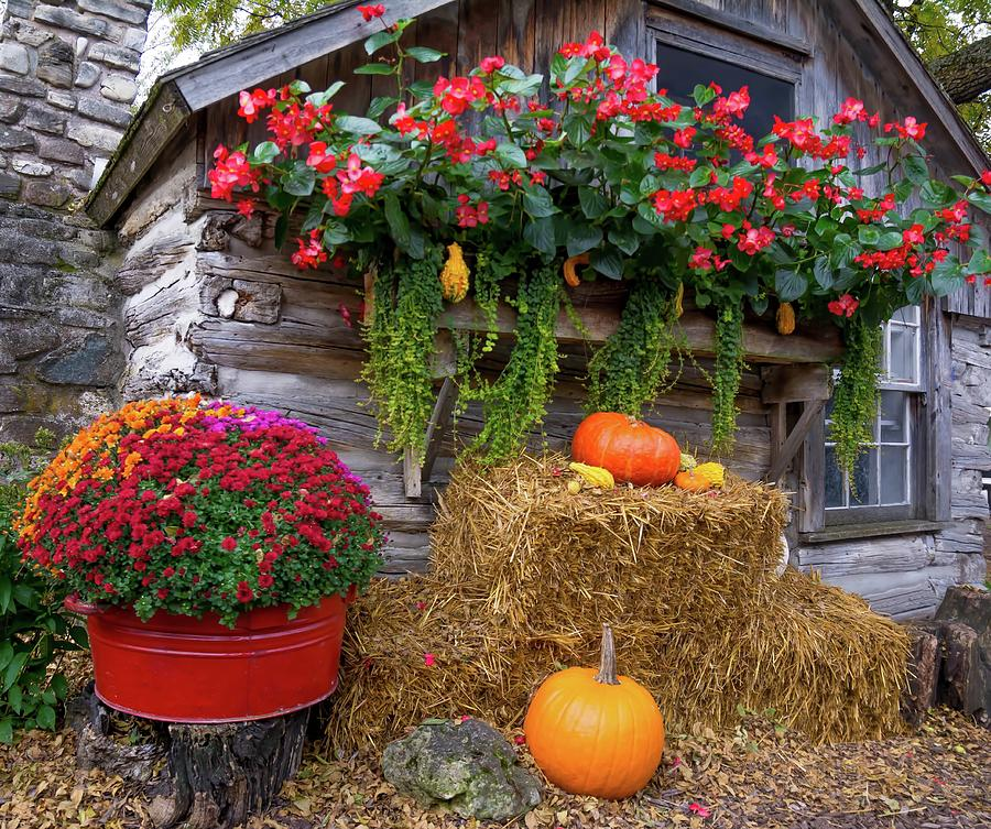 The Color of Autumn by Patti Raine