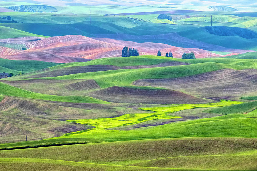 The Color Palette of the Palouse by Cheryl Strahl