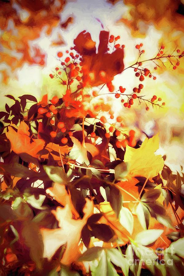 The Colors of Autumn by Dan Carmichael