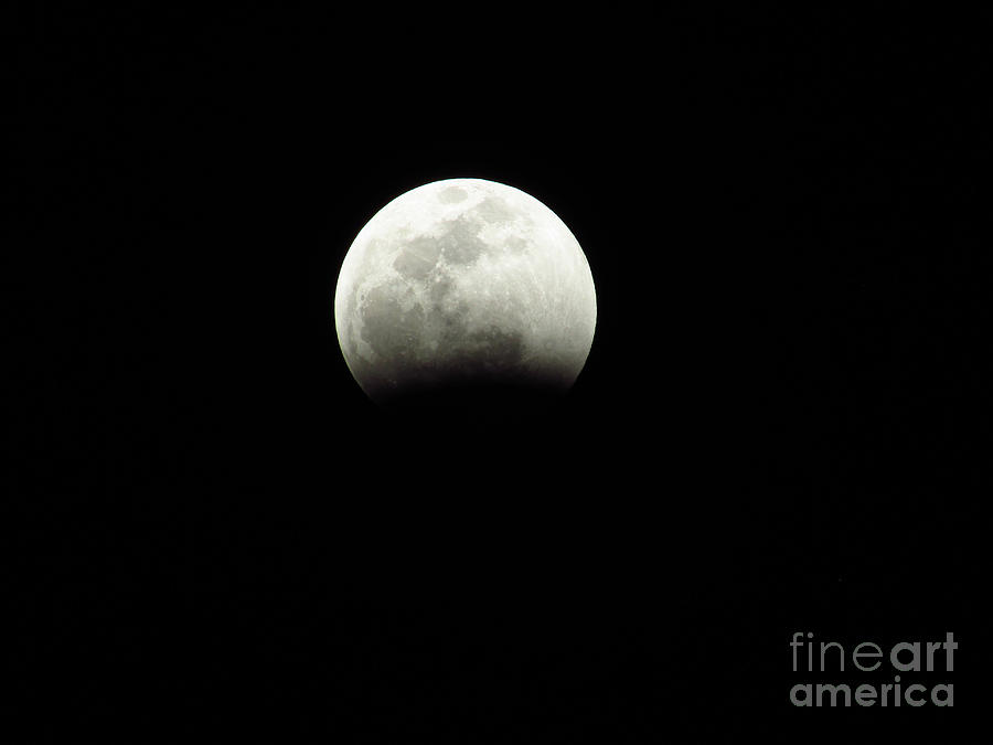 Moon Photograph - The Coming Super Blood Wolf Moon Lunar Eclipse 2019 2 29407 by Robert Knight