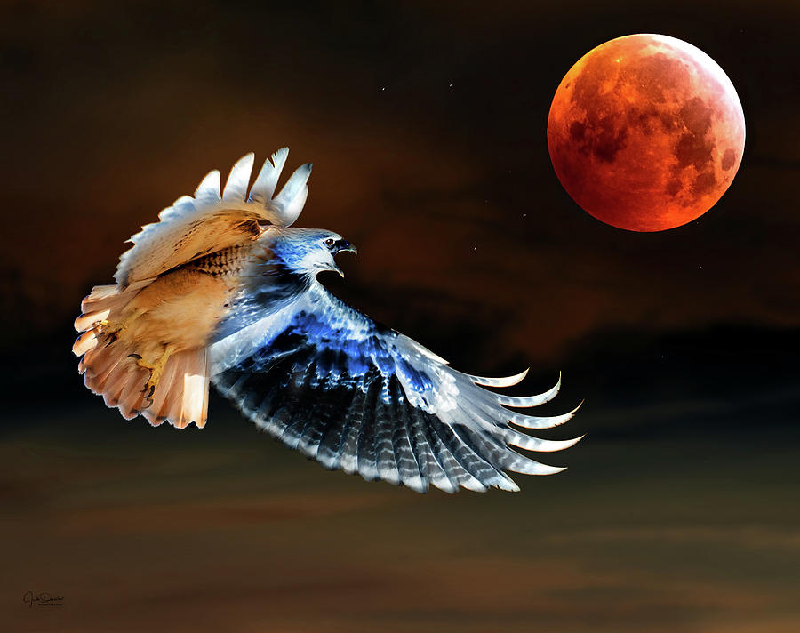 The Cry of the super blood wolf moon by Judi Dressler