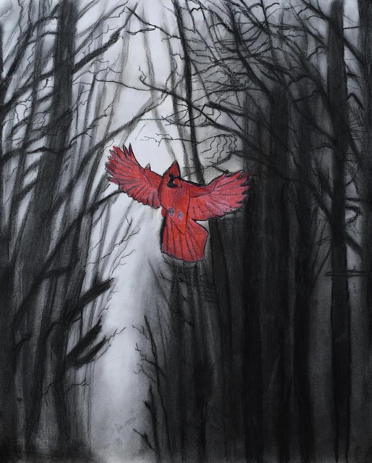 The Dark Forest by Nadija Armusik