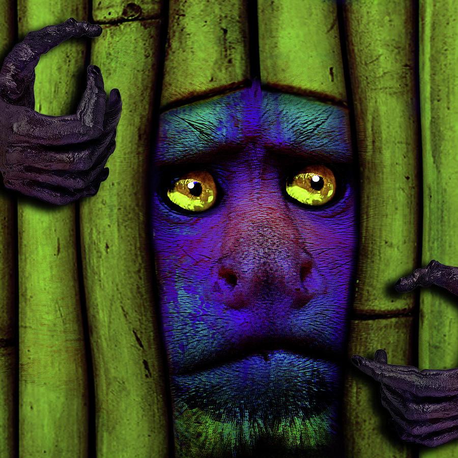 Monkeys Mixed Media - The Days In Between by Dana Brett Munach