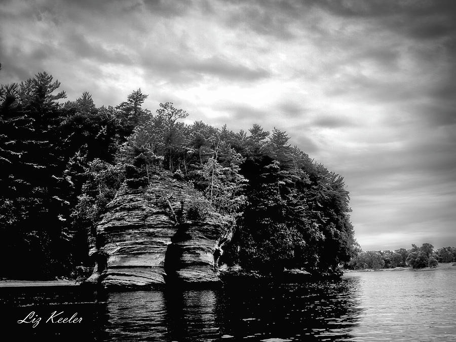 The Dells by Liz Keeler
