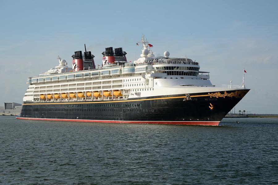 The Disney Wonder Departs by Bradford Martin