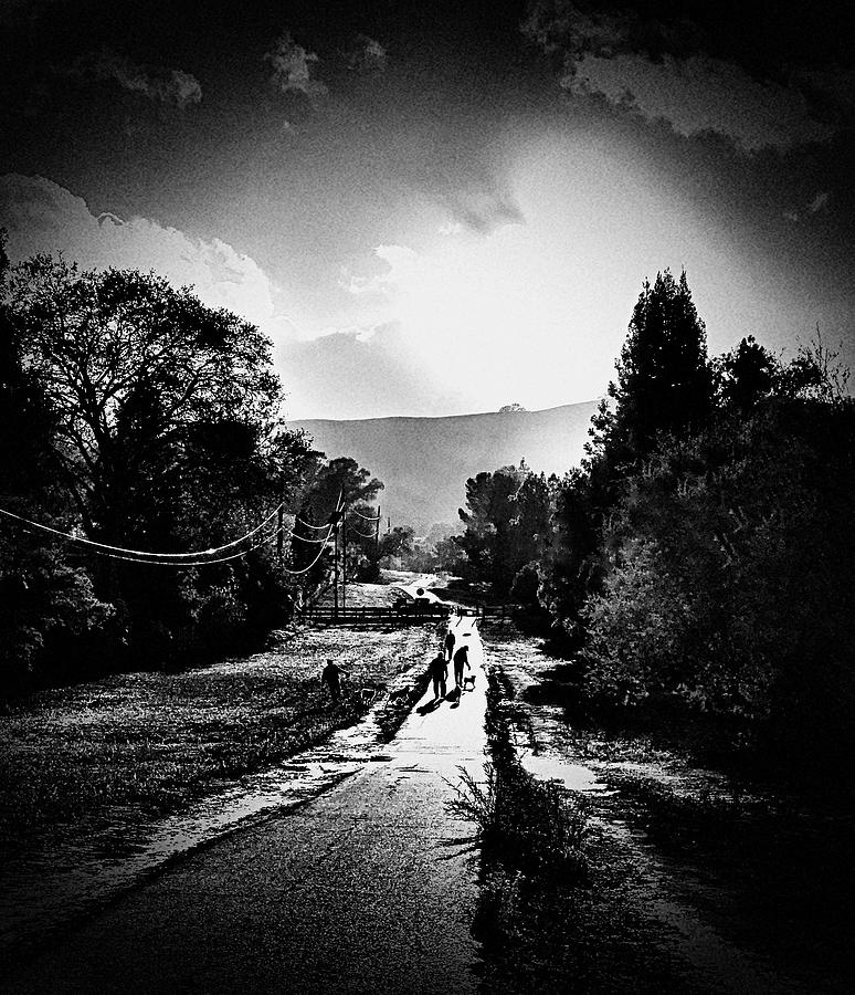 Black And White Photograph - The Dog Walkers by Brad Hodges