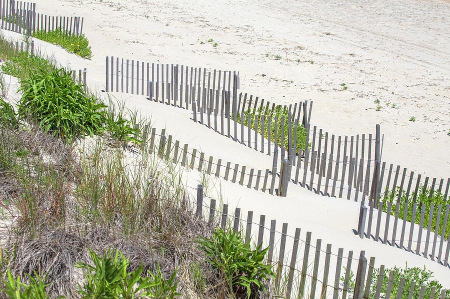 The Dunes 16 by David Stasiak