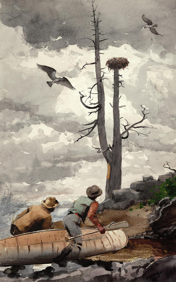 Winslow Homer Painting - The Eagles Nest, 1902 by Winslow Homer