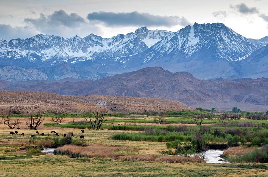 The Eastern Sierra Nevada Mountains Photograph by Rachid Dahnoun
