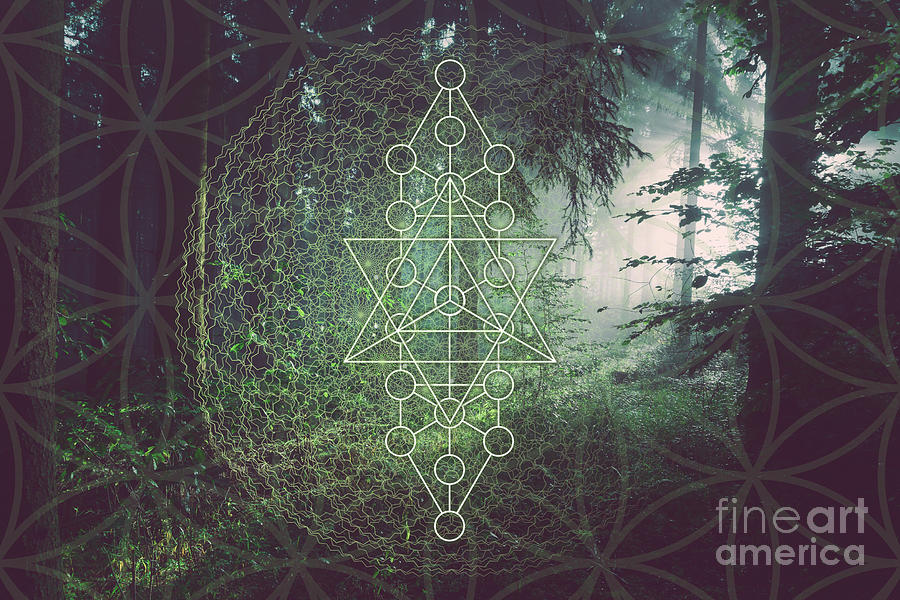 The Elementals Sacred Geometry by Nathalie DAOUT