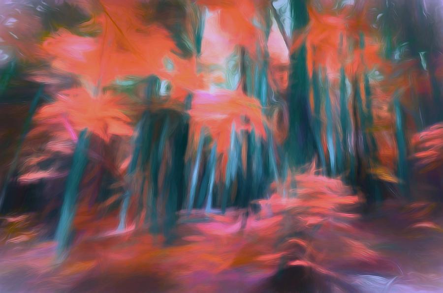 Tree Digital Art - The Elusive Forest by Tara Turner