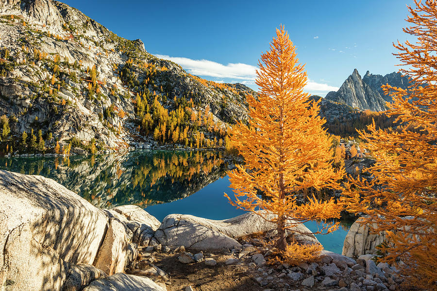 The Enchantments by Johnny Adolphson