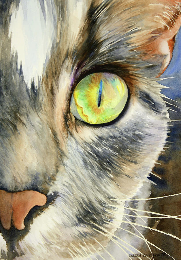 Cat Painting - The Eye Of The Kitty by Brenda Beck Fisher
