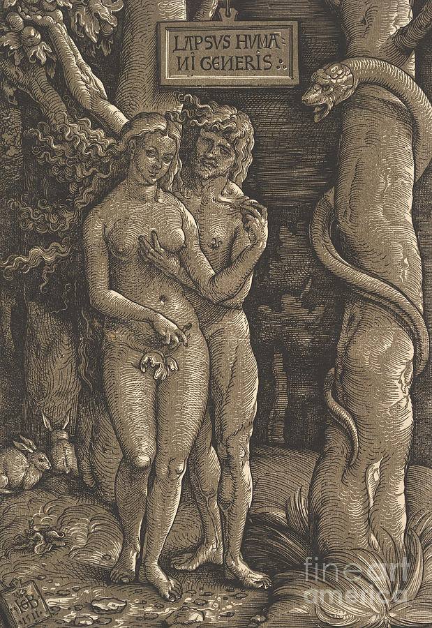 Genesis Drawing - The Fall Of Mankind, 1511  by Hans Baldung Grien
