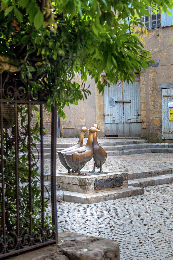 Statue Photograph - The Famous Geese Of Sarlat by W Chris Fooshee