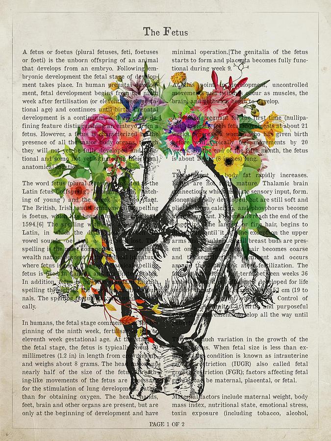 The Fetus Digital Art