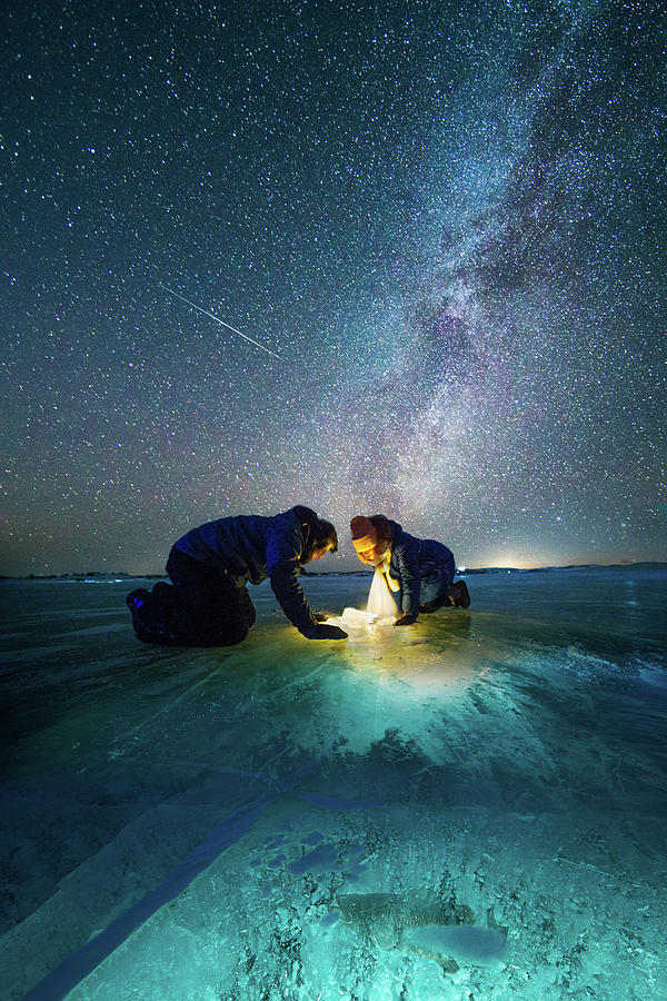 Ice Photograph - The Fish by Bingo Z