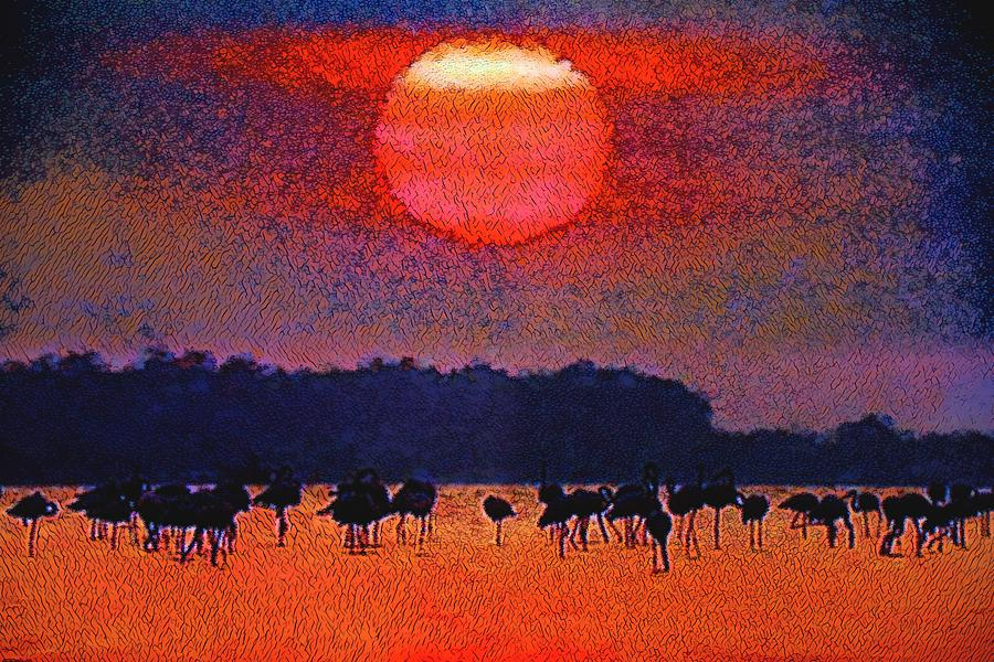 The Flock at Sunset by Don Columbus