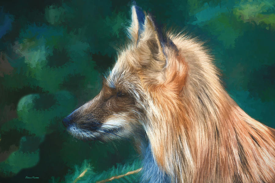 Fox Painting - The Fox 235 - Painting by Ericamaxine Price