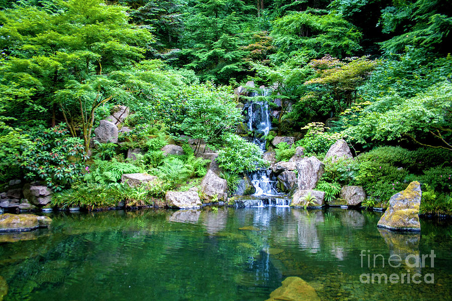 The Japanese Garden Canvas Print, Photographic Print, Art Print, Framed Print, Greeting Card, iPhone by David Millenheft