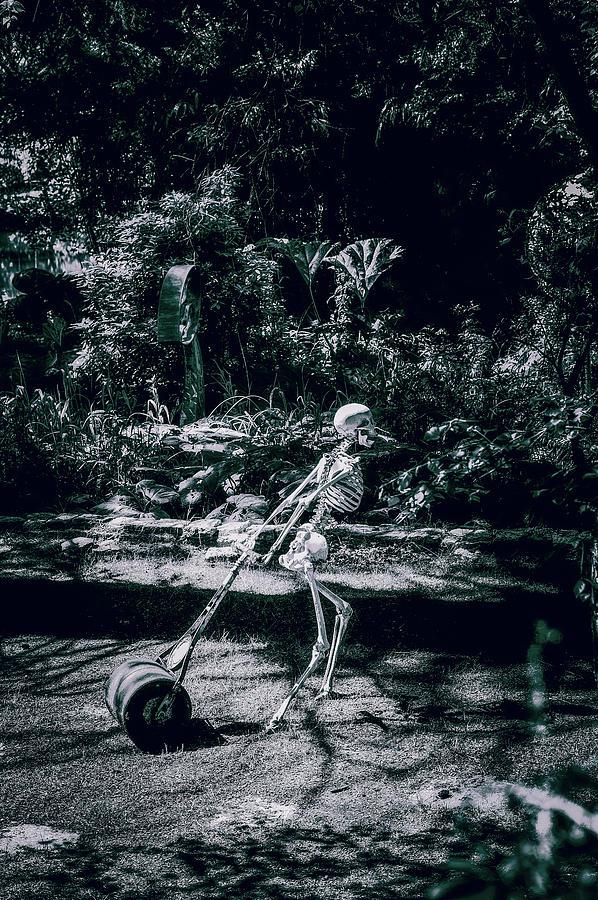Sculpture Photograph - The Gardener by Graham Cornall