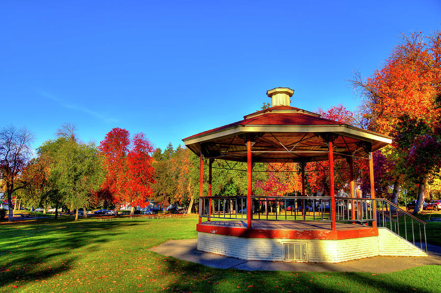 The Gazebo at Reaney Park by David Patterson