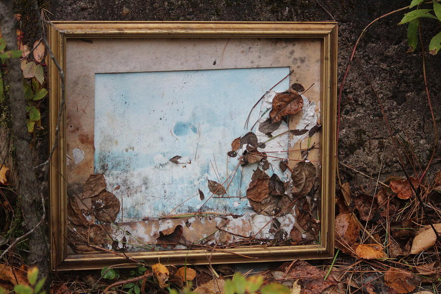 Superior Photograph - The Gift Left Behind by Callen Harty